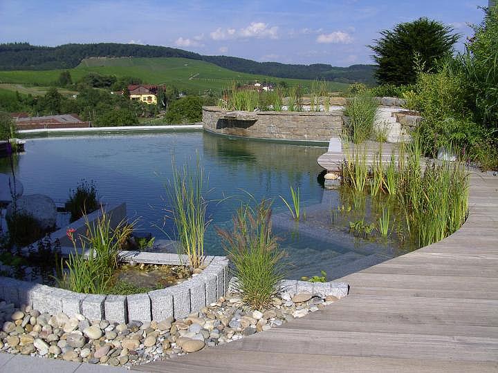 natural-swimming-pool-06