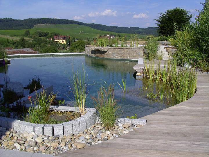 natural-swimming-pool-06