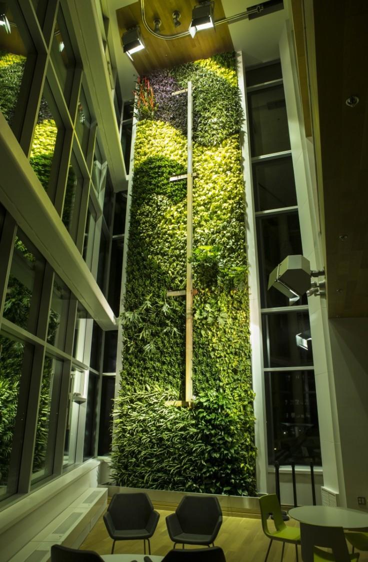Φυτεμένος τοίχος ύψους 65 μ.