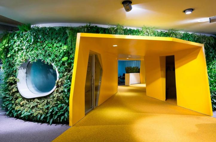 an-amazing-office-hallway-with-tantalizing-yellow-wall-and-flooring-with-natural-synthetical-plants-wall-application-with-unique-round-window